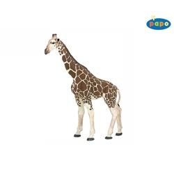 Girafa - Figurina Papo