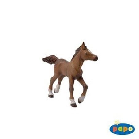 Figurina Papo-Manz rasa anglo-arab