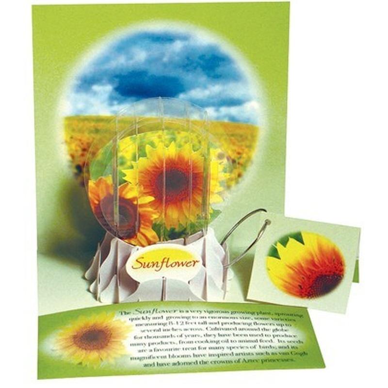 Felicitare 3D tip glob-Floarea soarelui