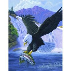 Prima mea pictura pe numere junior mic Vultur 24x33 cm