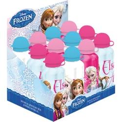 Recipient pentru apa 500ml Frozen