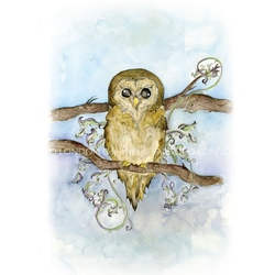 Felicitare Eclectic-The Owl