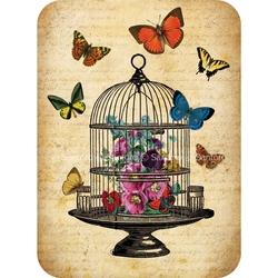 Felicitare Eclectic Butterflies