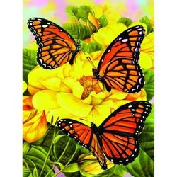 Prima mea pictura pe numere Fluturi Majestic Monarchs