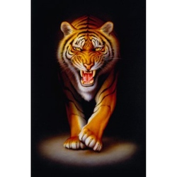 Puzzle Tigru 500 piese