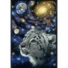 Puzzle Schimmel Univers 1000 piese