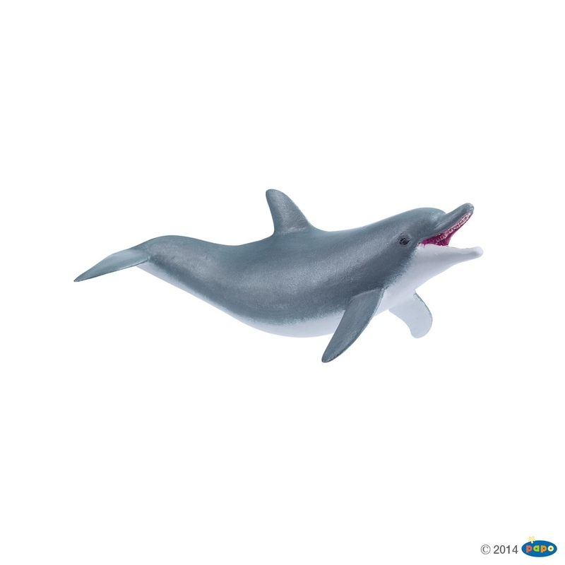 Delfin jucaus