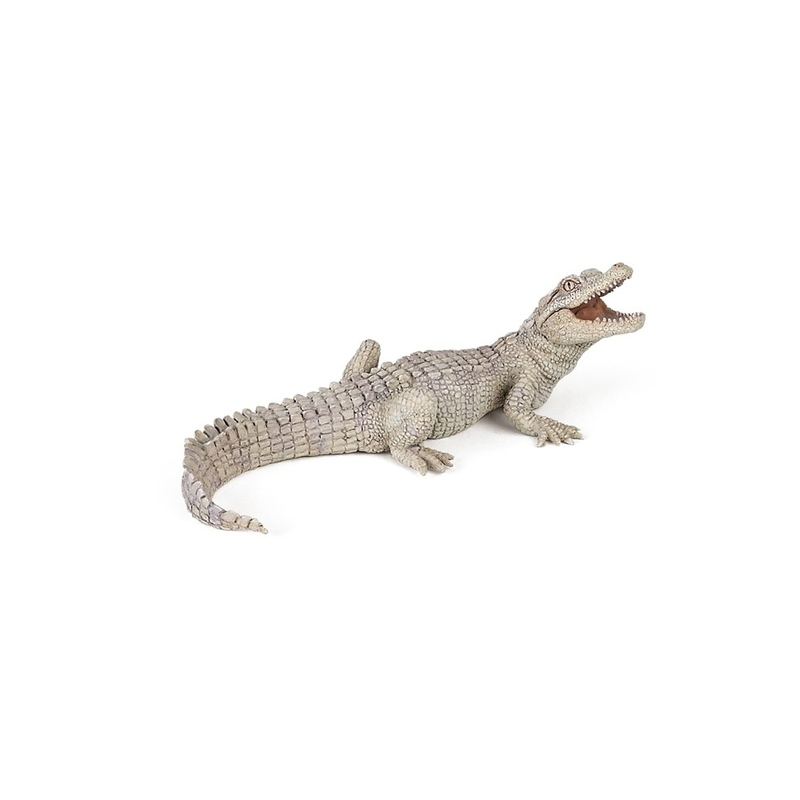 Pui de crocodil alb - Figurina Papo