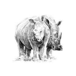 Crochiu incepatori-Rinoceri 22x29 cm
