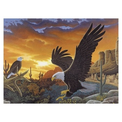 Prima pictura pe nr jr mare-Mesagerul cerului 32x40 cm