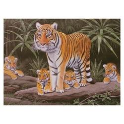 Prima pictura pe nr jr.mare-Supraveghere maternala