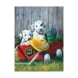 Prima mea pictura pe nr.junior mic-Cateii Pompieri 24x33 cm
