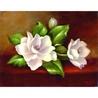 Set pictura artistica pe panza - Magnolia