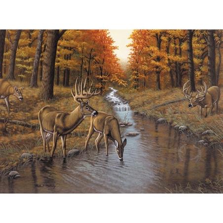 "Pictura creativa pe numere avansati - ""Symonds Creek"""
