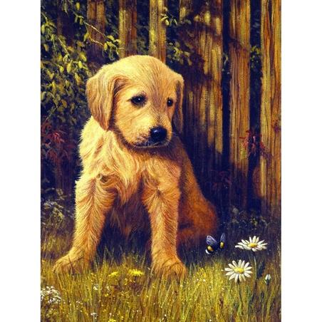 Prima mea pictura pe nr.junior mic- Catelus visator 24x33 cm