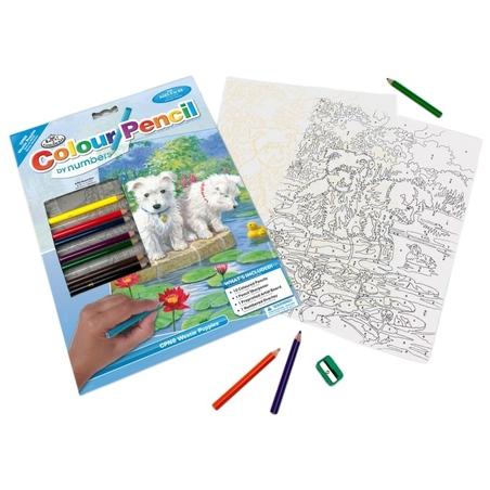 Set creativ educativ - Coloreaza pe numere - Westie
