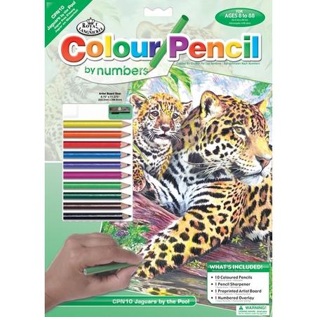 Set creativ educativ - Coloreaza pe numere - Jaguar