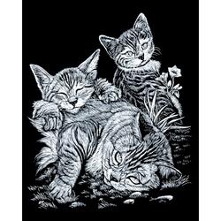 Set gravura pe folie argintie - Pisicute