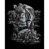 Set gravura pe folie argintie - Rinoceri