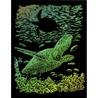 Set gravura pe folie curcubeu - Broasca testoasa