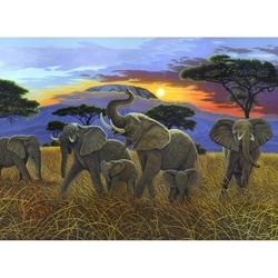 """Pictura pe numere juniori - """"Kilimanjaro"""""""