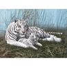 "Pictura pe numere juniori - ""Tigri albi"""