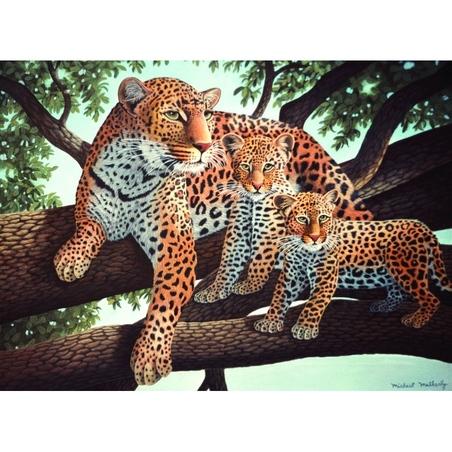"Pictura pe numere juniori - ""Leopard african"""