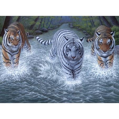 "Pictura pe numere juniori - ""3 tigri"""