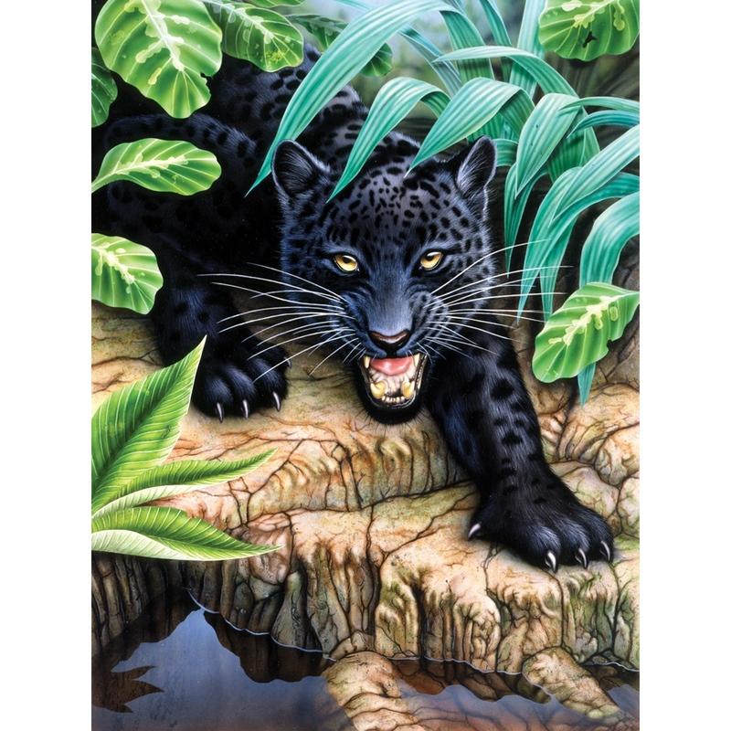 Prima mea pictura pe nr.junior mic - Leopard negru