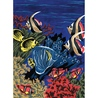 Prima mea pictura pe nr.junior mic - Viata marina