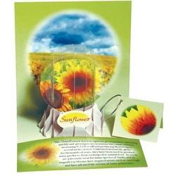 Felicitare 3D tip glob-Floarea soarelui. O felicitare ornament pentru tine si familia ta.