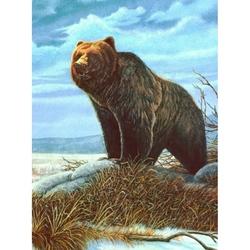 Prima mea pictura pe numere junior mic Grizly 24x33 cm