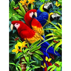 Prima mea pictura pe numere junior 4 Papagali 24x33 cm