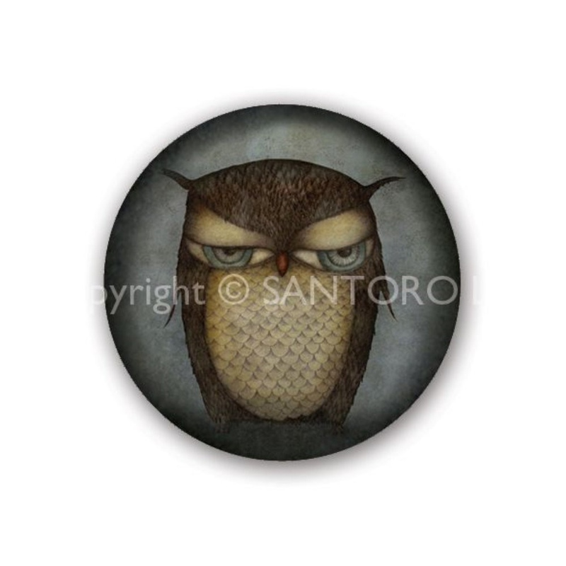 Set 3 insigne Eclectic Grumpy Owl