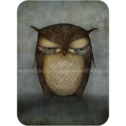 Felicitare Eclectic-Owl