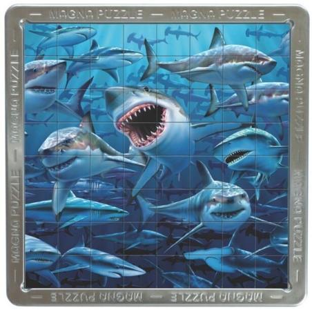 Rechini-3D mega puzzle magnetic