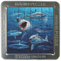Rechini-3D Puzzle magnetic