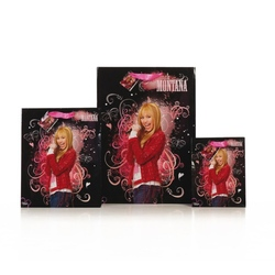 Punga Hannah Montana L