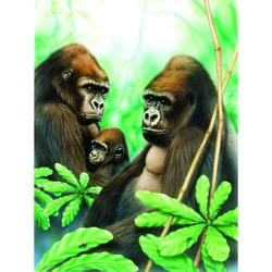 Prima mea pictura pe numere Gorile