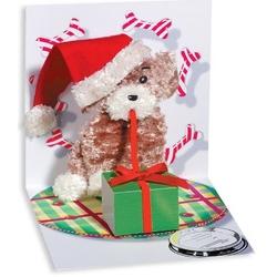 Felicitare 3D pentru iarna-Catel desfacand cadouri