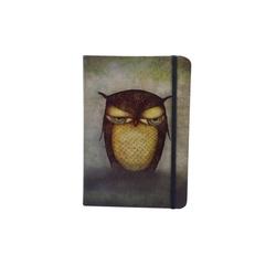 Agenda Eclectic cu coperti tari- Grumpy Owl