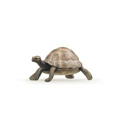 Figurina Papo -Broasca Testoasa