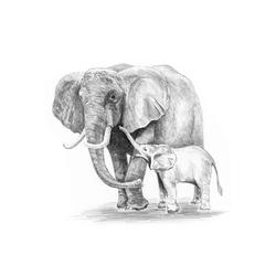 Crochiu incepatori-Elefant 13x18 cm