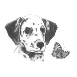 Crochiu incepatori-Dalmatian 13x18 cm