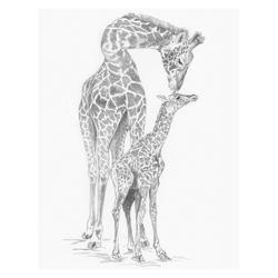 Crochiu incepatori-Girafa cu pui 22x29 cm
