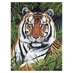 Prima pictura pe nr jr mic-Tigru ascuns 24x33 cm