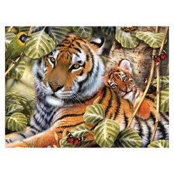 Prima pictura pe nr junior mare-Tigru in umbra Jad Flamande