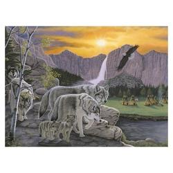 Prima pictura pe nr junior mare-Cararea lupilor