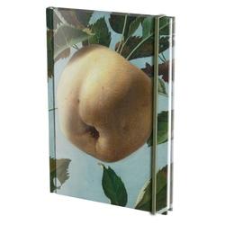 Agenda A5 Stilleven met appel, Pyke koch