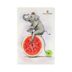 Fruity Scooty Caiet activitati Fruity Scooty Elephant